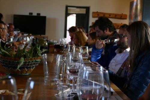 12.Degustazione vino